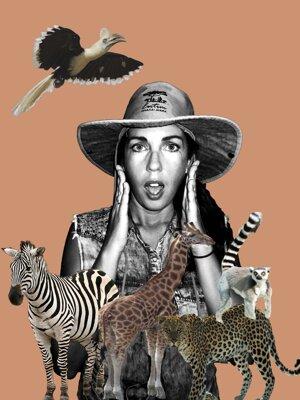 Pop Art -Collage