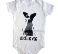 Jack Russell terrier Body