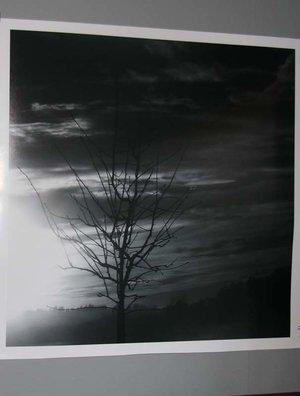 Fotopapper - Med din bild monterad på Kapaskiva - Digital uppladdning